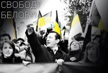 Басманов : Информация об отказе Александру Белову в регистрации на праймериз Демкоалиции – не соответствует действительности