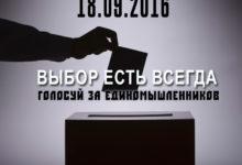 Кандидаты по одномандатным округам, которых националистам стоит поддержать на выборах в ГосДуму