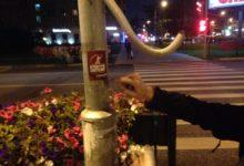 Националисты в Москве вновь провели акцию в поддержку ПАРНАС