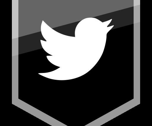 """""""Роскомнадзор"""" заспамил администрацию Твиттера требованием заблокировать для российских пользователей аккаунт Комитета """"Нация и Свобода"""""""