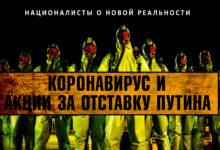 Коронавирус и акции за отставку Путина. Что думают националисты о новой реальности