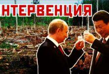 МИД Китая выступил против лозунгов Русского Марша: «Китайская оккупация – это абсурд»