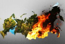 Русские националисты приняли участие в акции в защиту Сибири. Режим, который не тушит пожары, не имеет права на существование